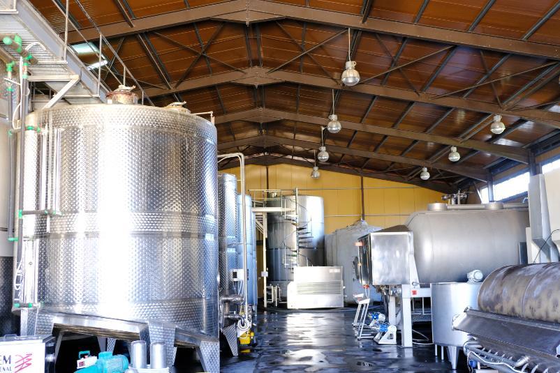 Weinherstellung-Michalakis